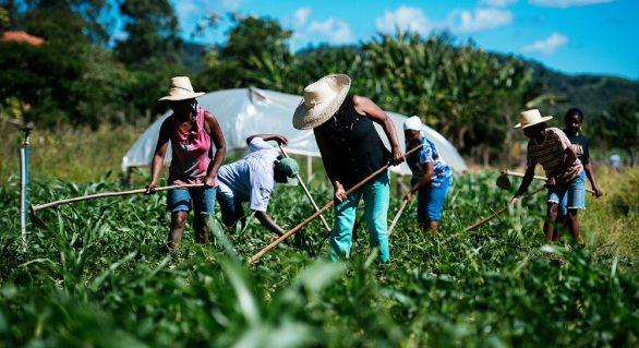 Senado aprova auxílio financeiro para agricultores familiares