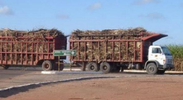 Rodovias de acesso a Pindorama serão recuperadas