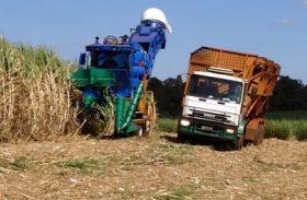 Safra 20/21 já beneficiou mais de 372 mil toneladas de cana
