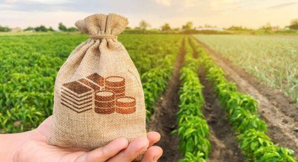 Balança comercial do agro registra recorde