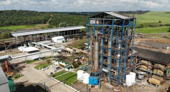 Meta de Pindorama é beneficiar 1 milhão de toneladas de cana