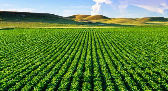 Índice de Confiança do Agronegócio é o maior da história