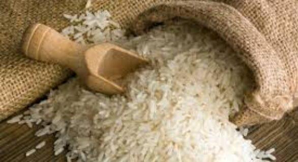EUA puxam exportações de arroz