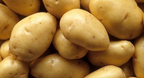 Preço da batata tem alta de 23,94%