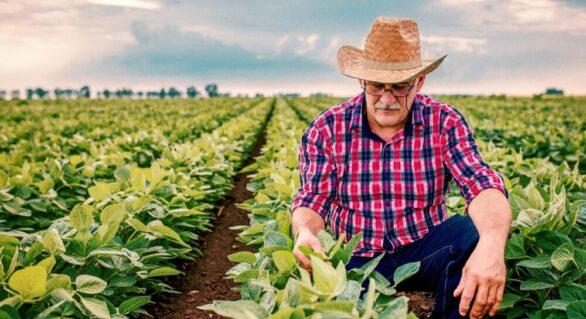 88 mil agricultores vão receber Garantia-Safra