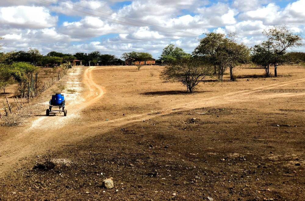 Novo decreto reconhece situação de emergência por causa da seca em 38 municípios de Alagoas