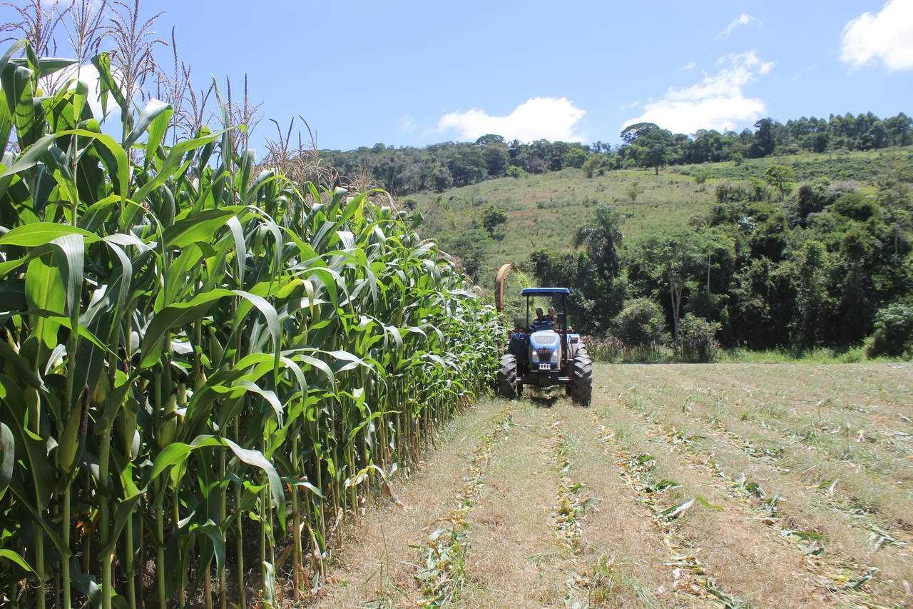 Aberta as inscrições para mecanização agrícola