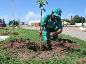 Maceió teve ampliação de serviços de limpeza e arborização