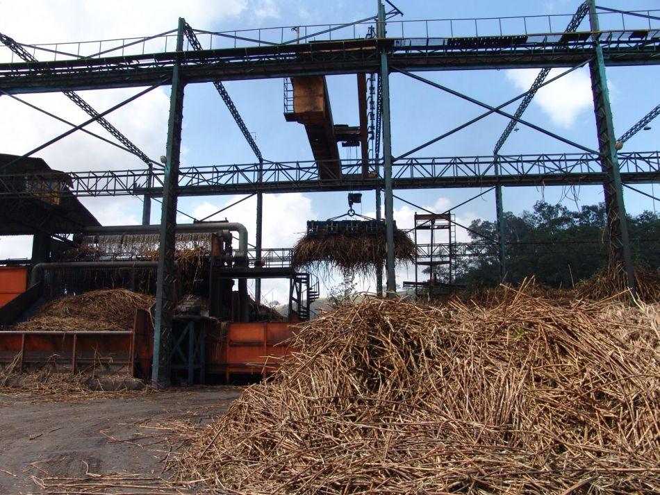 Usina Impacto deve moer um milhão de toneladas de cana