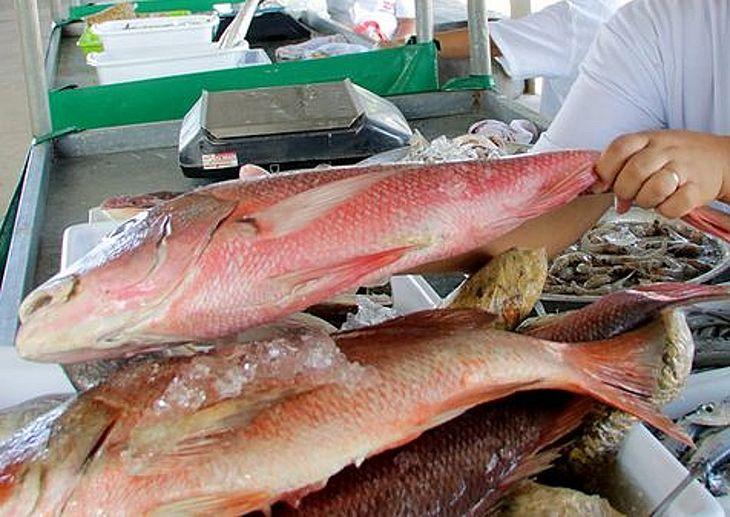 Santana do Mundaú reforça prevenção do Covid-19 na tradicional Feira do Peixe