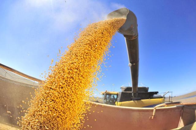 Safra de grãos fecha 2019 com recorde de produção