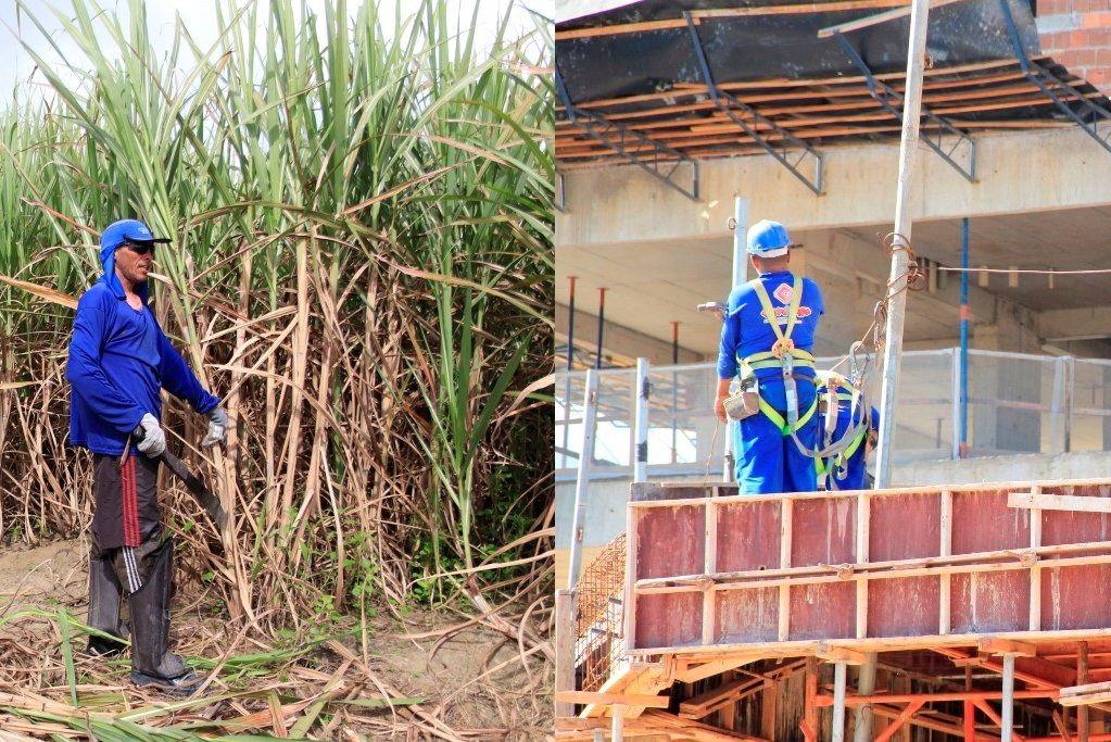 151 trabalhadores morreram em serviço nos últimos 6 anos em Alagoas
