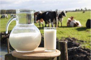 Produtores de leite de Pindorama participam da Expo Bacia Leiteira