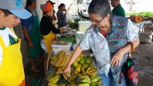 Terça-feira (5) é dia da tradicional Feira Orgânica na Semarh