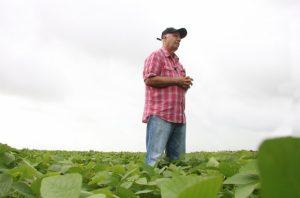 Agricultura promove Dia de Campo sobre colheita da soja nesta quarta-feira (20)