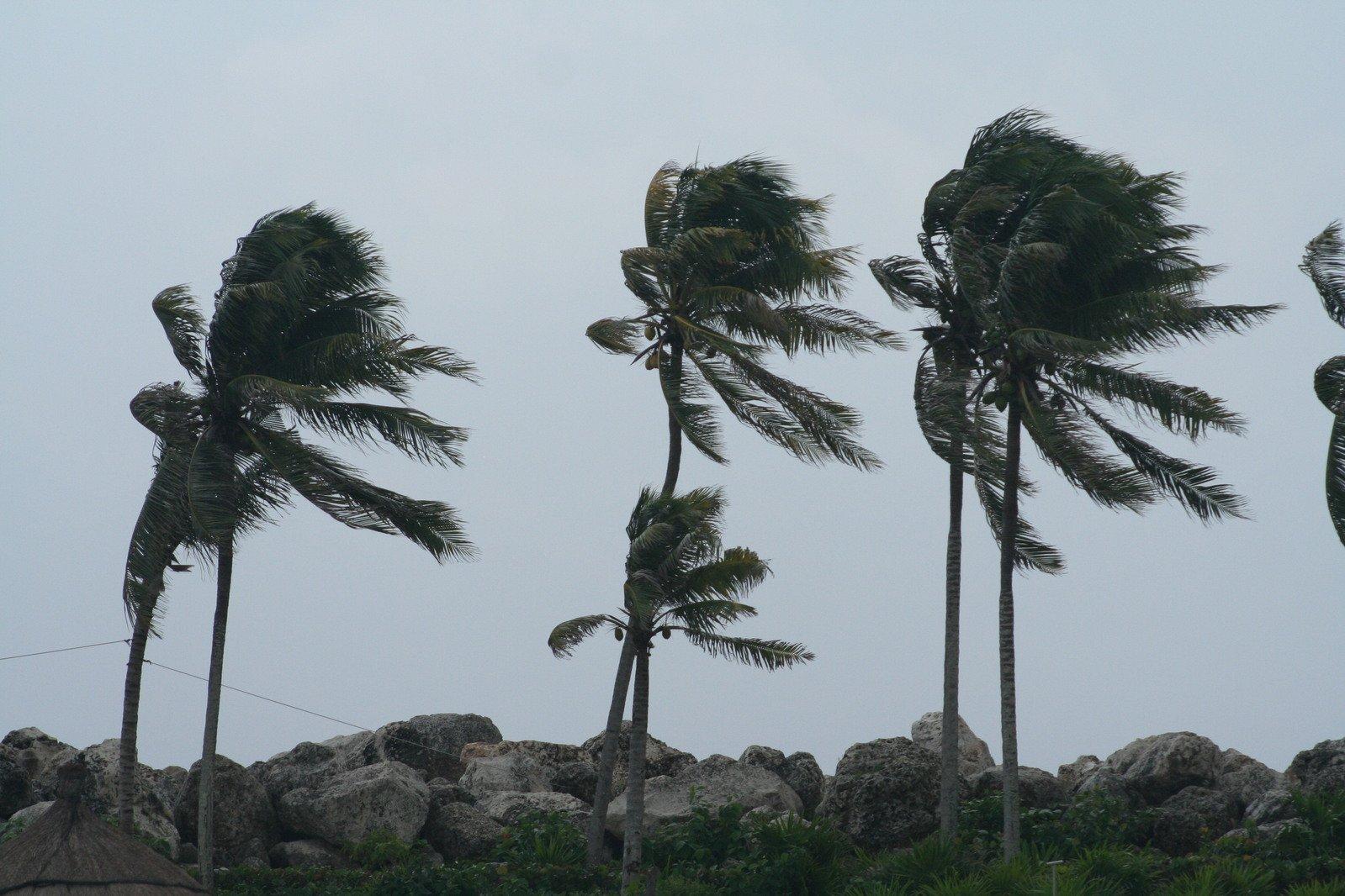 Fortes ventos de até 60km/h chegam ao litoral alagoano