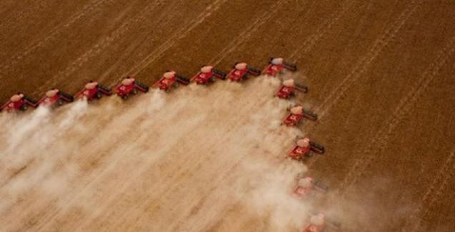 Cooperativas agropecuárias do Brasil faturaram R$ 200 bilhões em 2017
