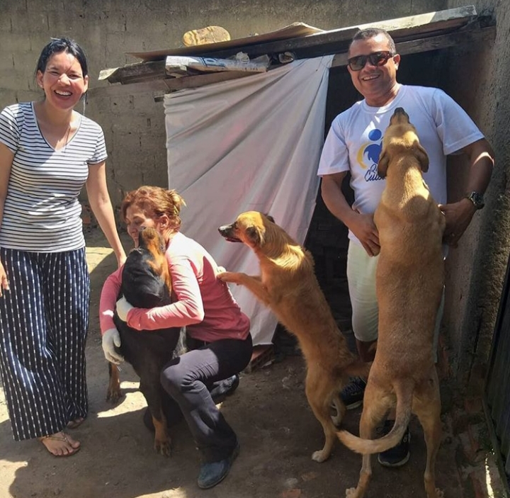 Projeto social alimenta animais de rua: quem ama cuida