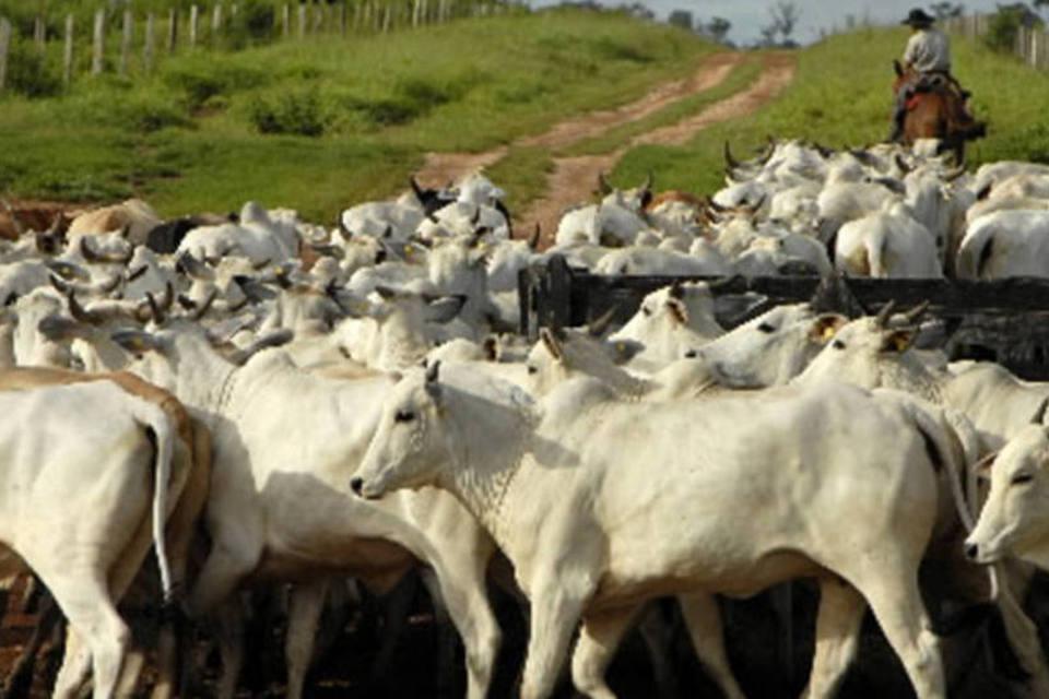 Vendas de carne em ritmo lento no varejo