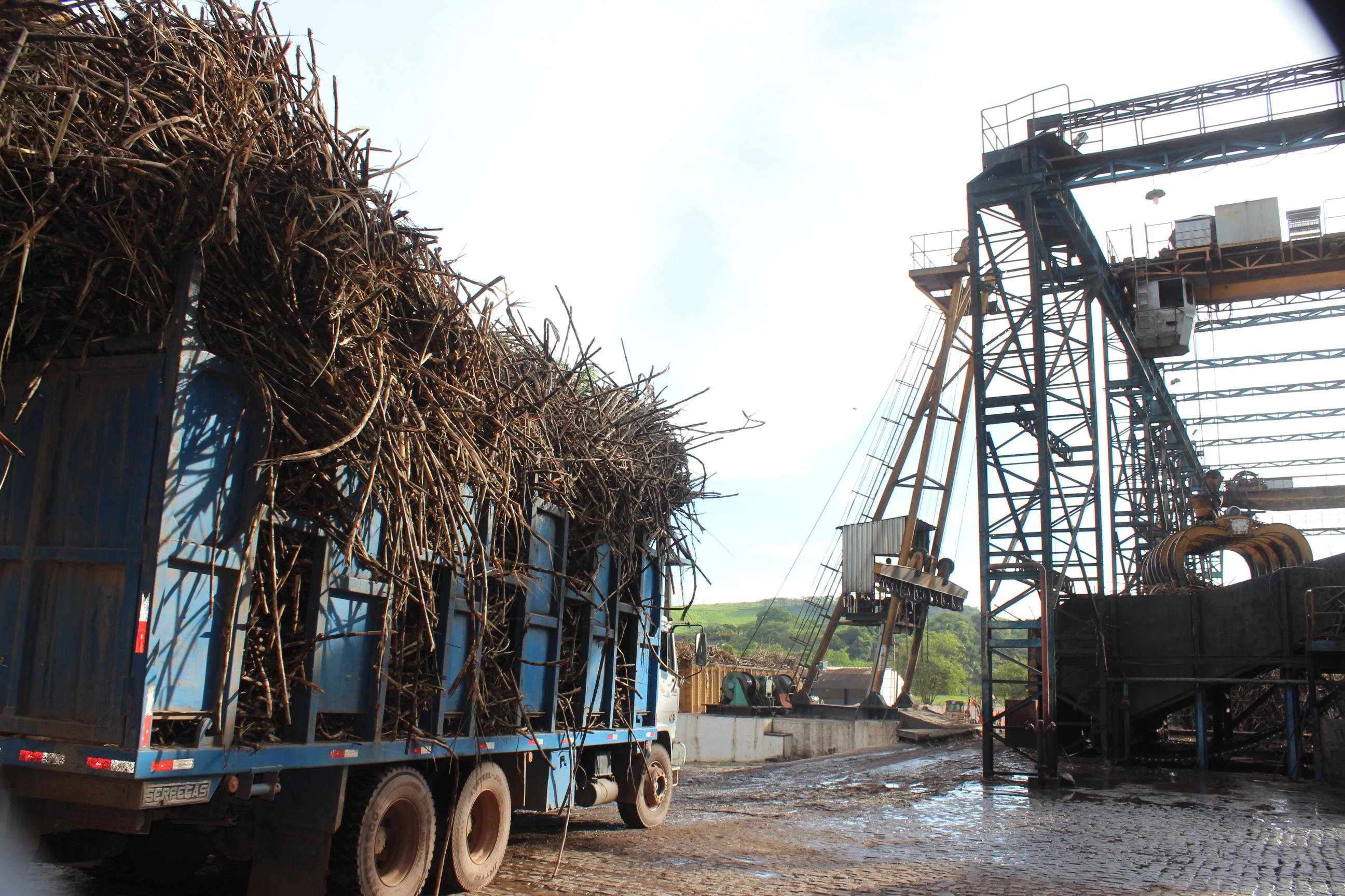 Safra 18/19 é encerrada com 16,4 milhões de toneladas de cana processadas