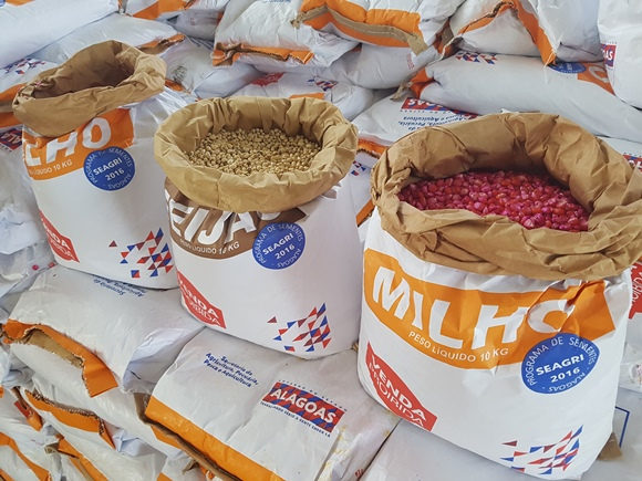 Unicafes quer celeridade na distribuição de sementes