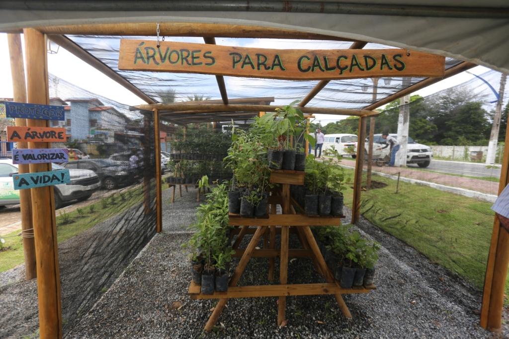 Marechal Deodoro recebe o título de Cidade Destaque em Gestão Ambiental