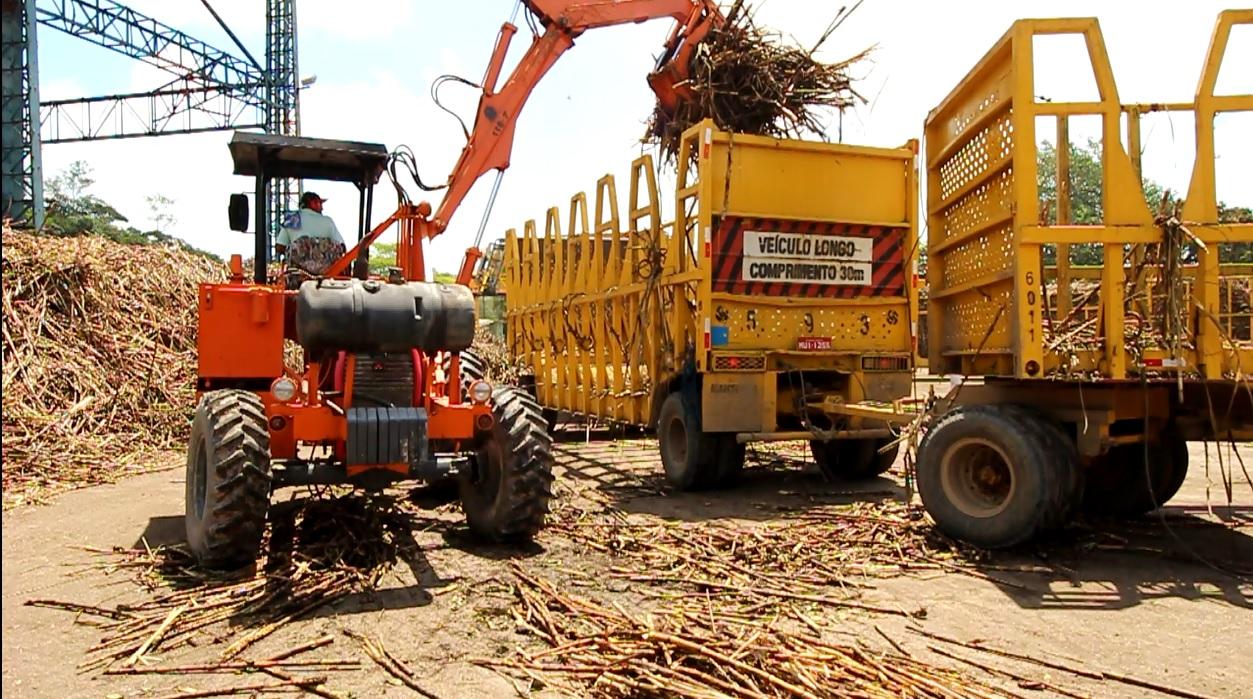 Alagoas beneficiou 15,9 mi de toneladas de cana até fevereiro