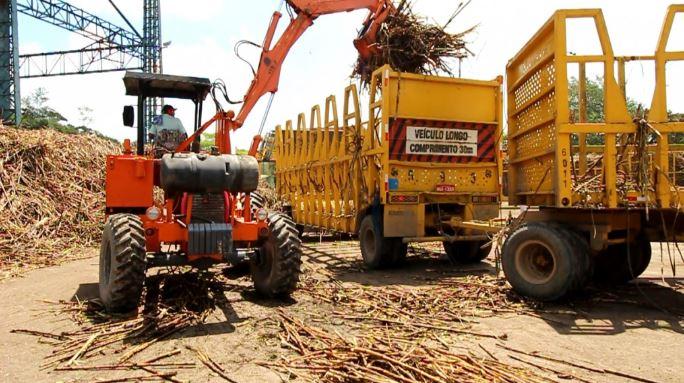 Safra de cana 2019/2020 em Alagoas cresce 9,4%