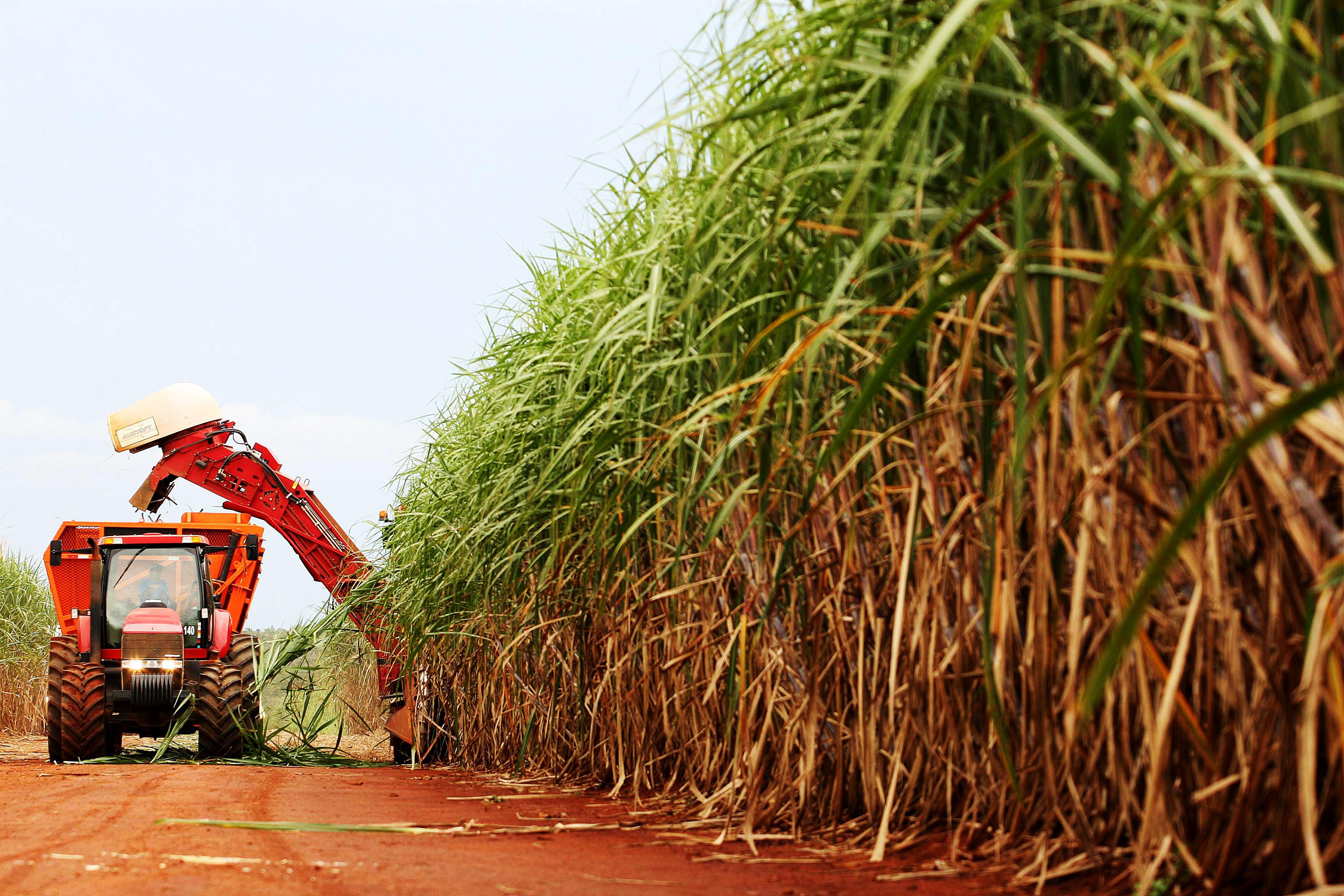Campanha do Sindaçúcar incentiva consumo de etanol em AL